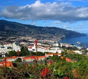Portugal – Madeira – Informació turística i guia de viatge de Madeira