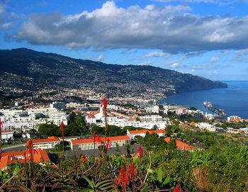 Portugal – Madeira – Información turistica y guia de viaje de la Isla de Madeira