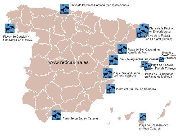 Consulta las playas de España a las que puedes llevar a tu perro en verano / INFOVIAJERO DE ILTRIDA VIATGES / Consulta les platges d'Espanya on pots portar el teu gos a l'estiu